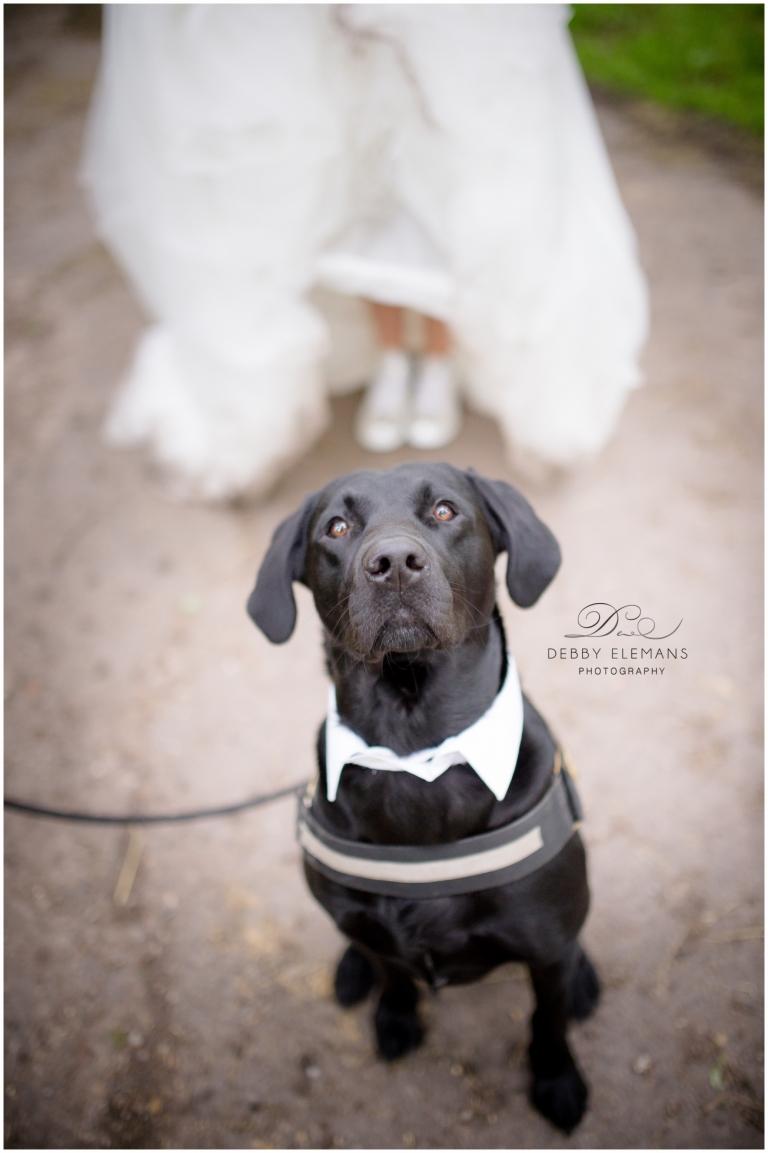 bruiloft Stefan & Manon | © Debby Elemans Photography
